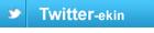 Twitter ikonoa